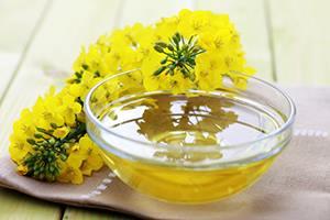 Канолата и рапичното масло са един и същ продукт