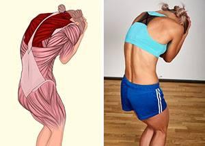 Разтягане на мускулите на гърба