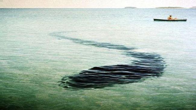 10 мистериозни снимки - Чудовището от остров Хук