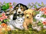 Сънища с животни