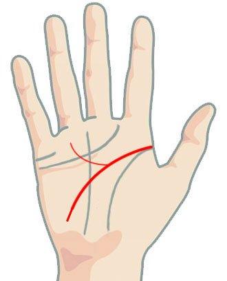 Линия на главата - звити нагоре клони под безименния пръст