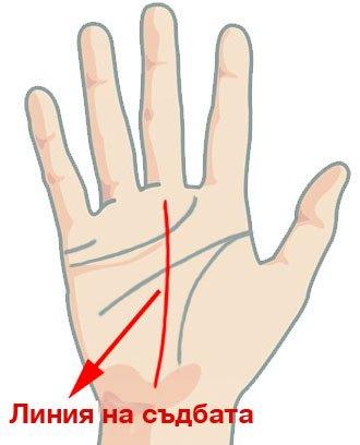 Гледане на ръка - линията на съдбата