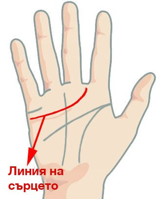 Гледане на ръка - линията на сърцето