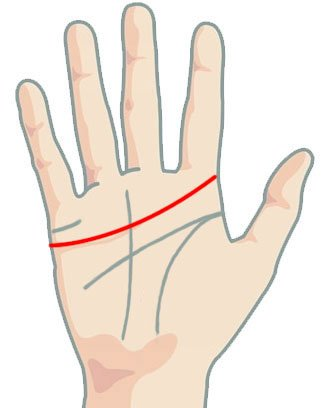 Линия на сърцето - дълга линия