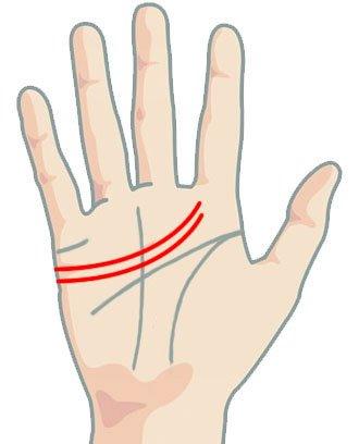 Линия на сърцето - две линии на сърцето