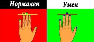 Знаете какво значи отношението на дължините на пръститеи